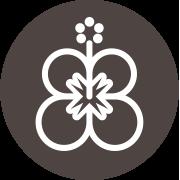 Hibiscus : La plante Africaine qui protège l'organisme